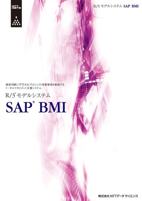 NTTデータのSAPというコンピュータシステムのA4、4ページパンフレット